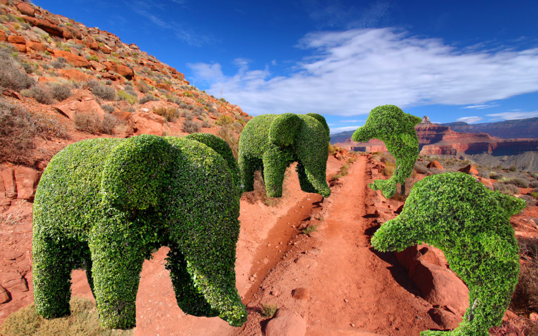 Elephant and dolphin topiaries in Grand Canyon South Kaibab Trail
